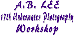 A.B. LEE 17th Underwater Photography Workshop